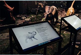Dinosaurus-näyttely Heurekassa